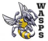 Wasps Sports Mascot