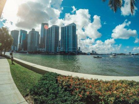Photo pour Vue sur le front de mer du centre-ville de Miami à travers les palmiers - image libre de droit