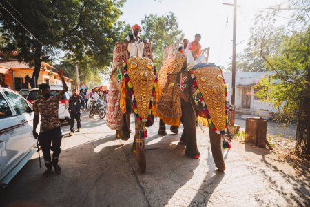 Indian  elephants with gold plated caparison standing for parade on festival in Ernakulam temple for the traditional ceremony Kerala, India.