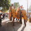 Indian  elephants with gold plated caparison stand...