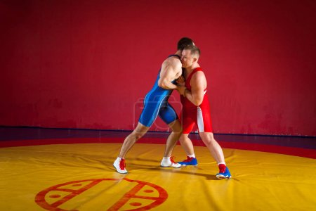 Two strong wrestlers in blue and red wrestling tig...