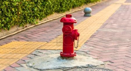alte rote hydranten mit strasse hintergrund