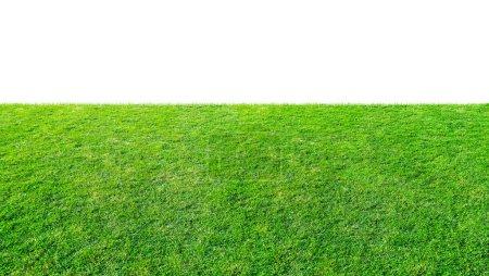 Photo pour Champ de prairie d'herbe verte du parc extérieur isolé en arrière-plan blanc avec sentier de coupe. Campagne extérieure prairie nature. Paysage du champ d'herbe dans l'utilisation du parc public comme fond naturel. - image libre de droit