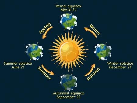 Cycle of Earth seasons of the year. Autumnal and vernal equinox, summer and winter solstice.