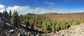 Národní Park Teide. Turistika v Tenerife