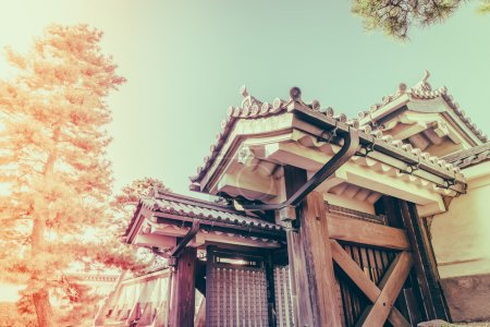 Beautiful  Imperial Palace in Tokyo, japan  ( Filtered image pro