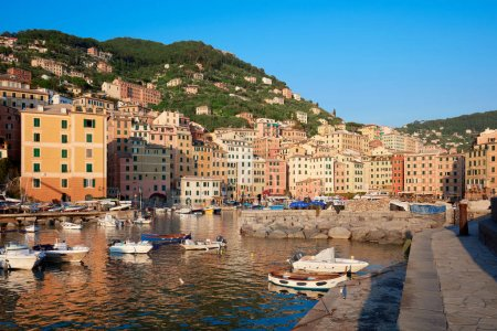 Camogli typical village with colorful houses and small harbor bay