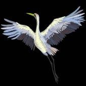 the crane bird  vector illustration