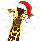 Giraffe head with Santa Claus hat vector graphic illustration
