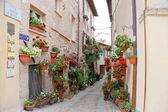 SPELLO, ITALY - 29 JUNE, 2017:  Charming floral streets in Spello, Umbria Italy, artistic pictur
