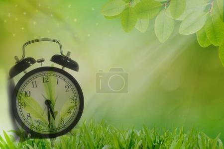 Alarm clock in early fresh morning green grass,healthy life conc