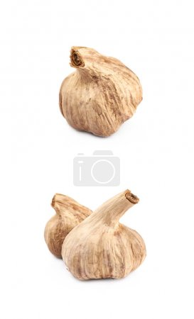 Dried garlic bulb isolated