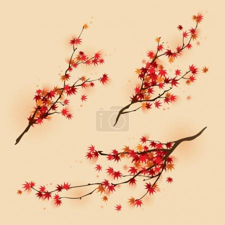 autumn maple leaves on branches