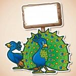 Cartoon characters of beautiful peacocks with blan...