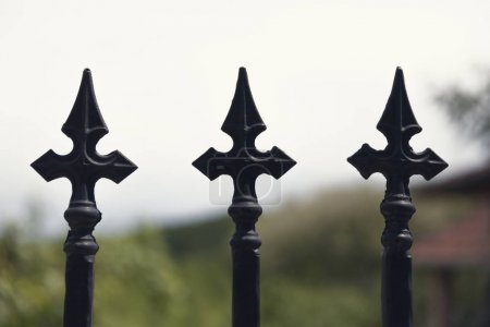 Photo for Ornamental detail of the wrought iron fence - Royalty Free Image