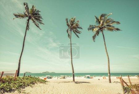 Palms on Ipanema Beach in Rio de Janeiro