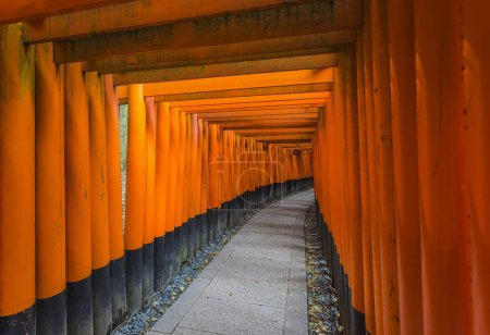 Tori Gates of Fushimi Inari Shrine in Kyoto, Japan. Empty pathway