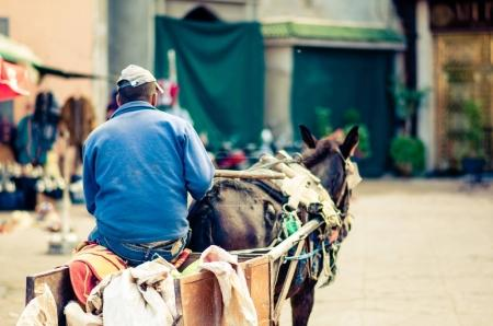 Donkey cart by Marrakech in Morocco