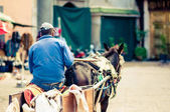 Donkey cart by Marrakech in Morocco