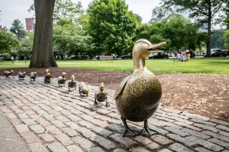 Make Way for Ducklings Boston