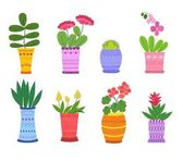 Cartoon Flower in pots vector set Vector illustration isolated on white background