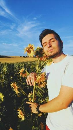 man in field of sunflowers