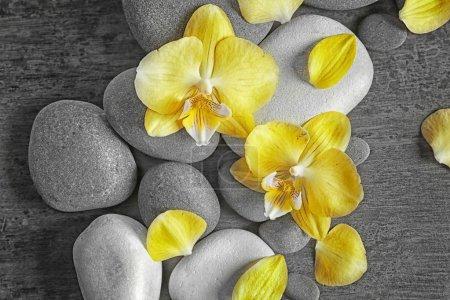 Photo pour Pierres de spa avec des fleurs d'orchidées, vue de dessus - image libre de droit