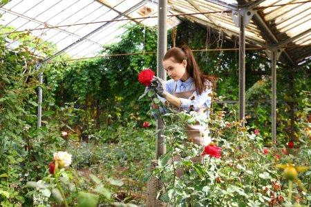 Pretty young gardener