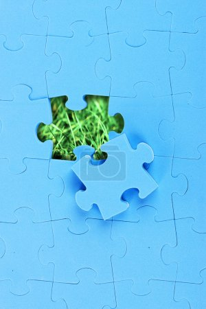 Blue puzzle with missing piece over green grass background.