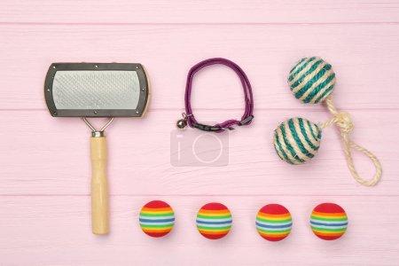 Pet accessories flat lay