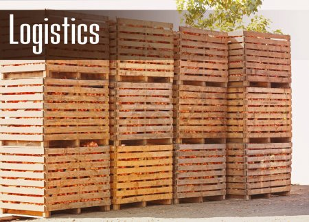 Wooden crates with harvest