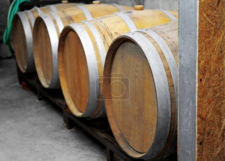 Wooden barrels for wine