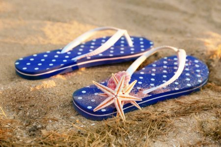 Sandals and starfish on sea sand
