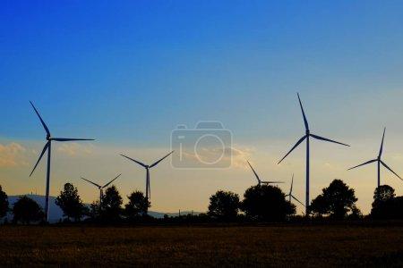 Windmills on field at sunset