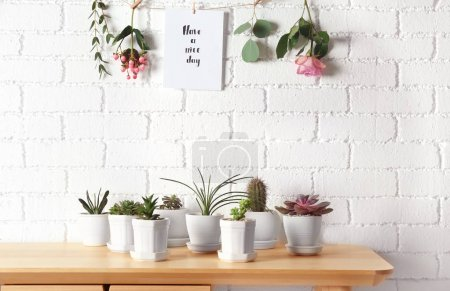 Photo for Floral composition of succulents and cactus with greeting card on white brick wall background - Royalty Free Image