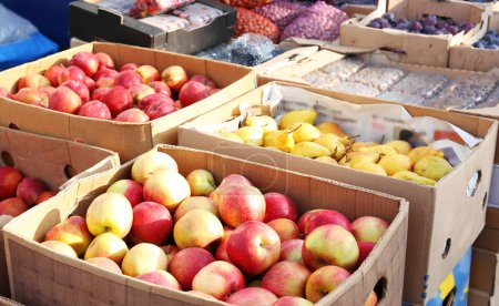 Fresh fruits in cardboard boxes