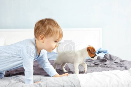 boy with funny puppy