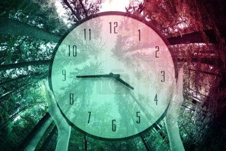 Photo pour Concept de changement d'heure. aiguilles femelles tenant horloge et arbres arrière-plan - image libre de droit