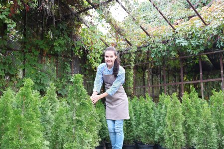 gardener looking after young thuja plants