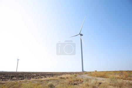 Windmills in summer field