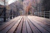 """Постер, картина, фотообои """"Деревянный мост в лесу"""""""
