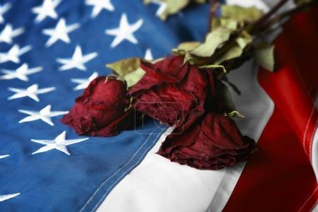 Dried roses on American national flag
