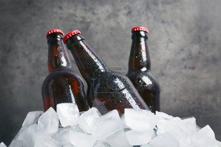 Bottles of beer in ice
