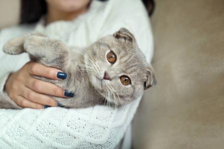 woman holding cute cat