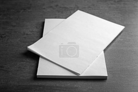 white blank brochures