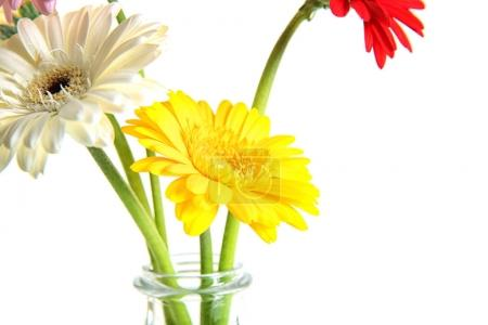 Photo for Vase with bouquet of beautiful flowers on white background - Royalty Free Image