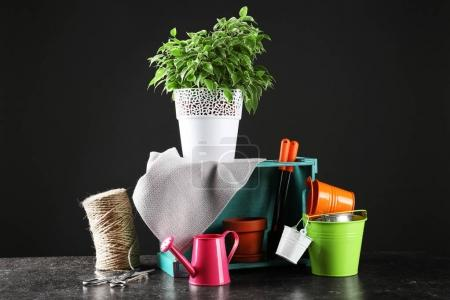 Plant and gardener equipment