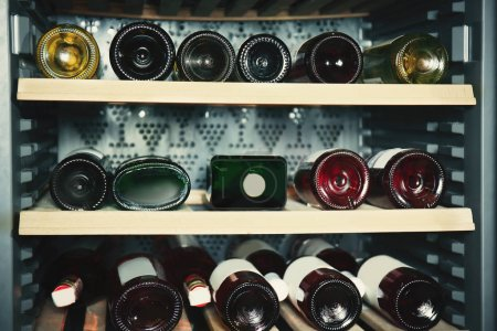 Wine bottles in refrigerator