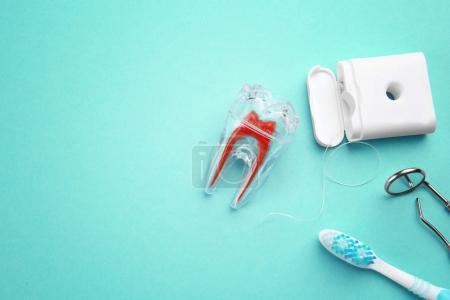 Toothbrush, plastic tooth mockup, dental instruments