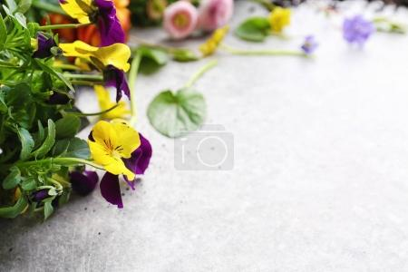 Composition with Beautiful flowers